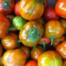 HEIRLOOM NON GMO Turkish Orange Eggplant 25 seeds