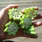HEIRLOOM NON GMO Star of David Okra 25 seeds