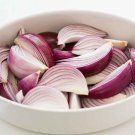 HEIRLOOM NON GMO Bronze D' Amposta Onion 50 seeds