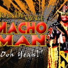 Macho Man Randy Savage Wrestler 16x12 Print Poster