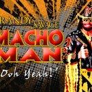 Macho Man Randy Savage Wrestler 32x24 Print Poster