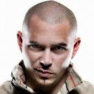 Pitbull Rapper Singer Music 16x12 Print Poster