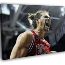 Joakim Noah Scream Chicago Bulls Basketball 30x20 Framed Canvas Print