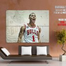Derrick Rose Basketball Chicago Bulls NBA Giant Huge Print Poster
