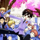 Ouran High School Host Club Characters Anime Manga Art 16x12 Print POSTER