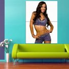 AJ Lee Professional Wrestler Divas Championship 47x35 Print Poster
