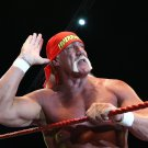 Hulk Hogan Wrestling Champion WWE Terry Gene Bollea 32x24 Wall Print POSTER