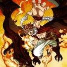 Fairy Tail Natsu Dragneel Cool Amazing Art Anime Manga 16x12 Print POSTER
