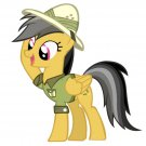 Daring Do My Little Pony Friendship Is Magic Cute 16x12 Print POSTER