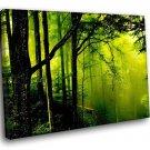 Nature Landscape Green Forest Fog 50x40 Framed Canvas Art Print