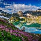 Austria Mountain Lake Flower Field Amazing Landscape 24x18 Wall Print POSTER