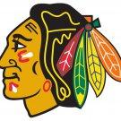Chicago Blackhawks Logo Hockey Sport Art 24x18 Print Poster