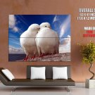Pigeons Dove Blue Sky Sea Love Romance Kiss Peace GIANT Huge Print Poster
