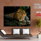 Leopard Wild Cat I M Watching You Giant Huge Print Poster