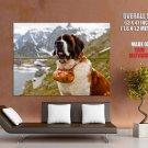 St Bernard Dog Barrel Beautiful Landscape Giant Huge Print Poster