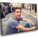 Niall Horan Pop Singer Music 50x40 Framed Canvas Print