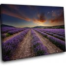 France Provence Lavender Field 40x30 Framed Canvas Art Print