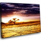 Africa Savanna Landscape Cloudy Sky Sunset 40x30 Framed Canvas Art Print
