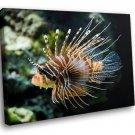 Lionfish Fish Caribbean Sea Coral Reef 40x30 Framed Canvas Art Print