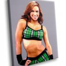 AJ Lee Sexy Wrestler Divas Champion 40x30 Framed Canvas Art Print