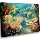 Deep Sea Corals Tropic Fish Marine 40x30 Framed Canvas Art Print