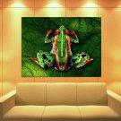 Body Art Frog Nude Girls 47x35 Print Poster
