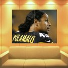 Troy Polamalu Pittsburgh Steelers Football Huge Giant Print Poster