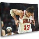 Joakim Noah Chicago Bulls Basketball Sport 30x20 Framed Canvas Print