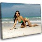 Arianny Celeste Hot Ring Girl Sexy Bikini Model 30x20 Framed Canvas Art Print