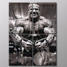 Jay Cutler Bodybuilder Fitness Muscles Mr Olympia 30x20 Framed Canvas Art Print