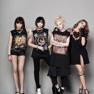 2NE1 K Pop R B Hip Hop Band Music 32x24 Print Poster