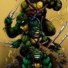 Teenage Mutant Ninja Turtles TMNT Angry Dark 32x24 Print Poster