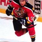 Pavel Bure Florida Panthers Hockey Sport 32x24 Wall Print Poster
