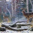 Snow Forest Deers Animal Landscape Oil Painting 24x18 Print Poster