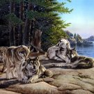 Wolves Animal Nature Landscape Lake Wolf Painting 24x18 Print Poster