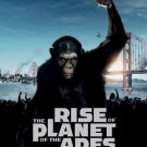 Rise Of The Planet Of The Apes Movie 16x12 Print POSTER
