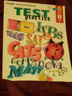 Test Practice Grade 5 Basic Skills-A Test Practice Series Steck-Vaughn