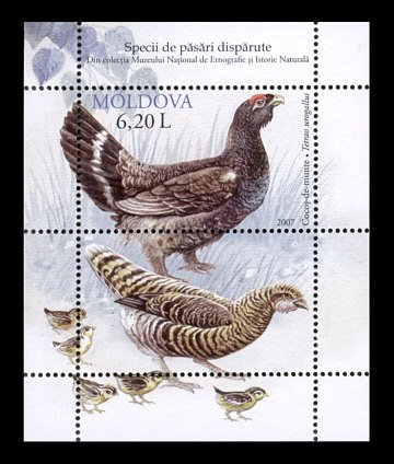 Republic of Moldova Birds souvenir sheet of 2 stamps new 2007 MNH