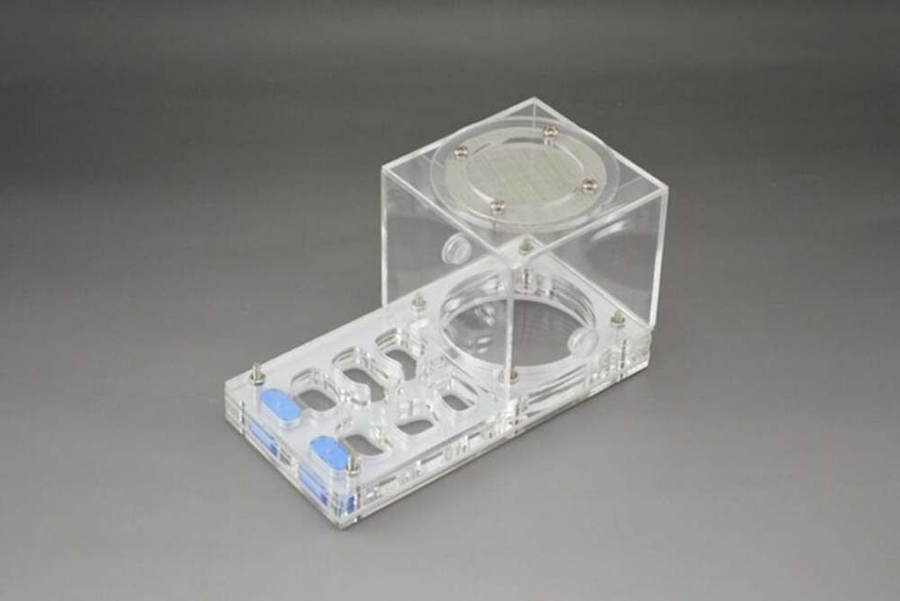Ant Housing Ants Farms Insect House Cage Tank acrylic Display Box 140x70x80mm