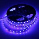 75W 5050SMD 5M 300LEDs 450-490nm Blue Light Decorative LED Strip Light(DC 12V)