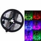 Plastic 300-LED SMD3528 24W RGB IR44 Light Strip Set with IR Remote Controller (White Lamp Plate)