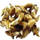 Magnolia Bud Tea - Decaffeinated - Herbal - Tea - Loose Tea - Loose Leaf Tea - 2oz