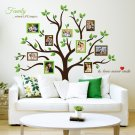 Large Family Tree Photo Frames Wall Decal (2 DAY SHIPPING)