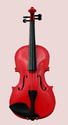 4/4 Violin with Accessories & Case Full Size,