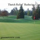 Turfgrass Organic Thatch Relief Reducing Liquid 5 Gallon