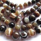 5strands 10mm high quality natural Botswana agate gemstone round ball brown grey veins bead