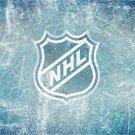 NHL Ice Logo Hockey 24x18 Print Poster