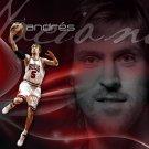 Andres Nocioni Chicago Bulls NBA 24x18 Print Poster