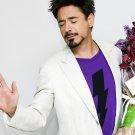 Actor Avangers Iron Man Downey Jr 24x18 Print POSTER