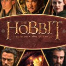 The Hobbit The Desolation Of Smaug Movie 24x18 Print Poster